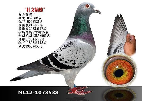 4-NL12-1073538