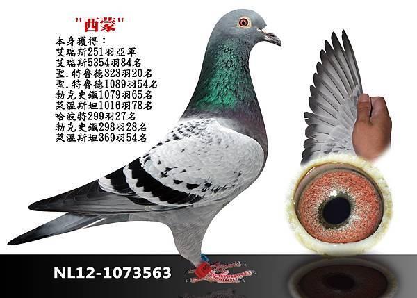 21-NL12-1073563
