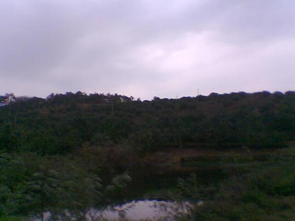 Photo052.jpg