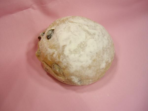 歐式雜糧葡萄麵包