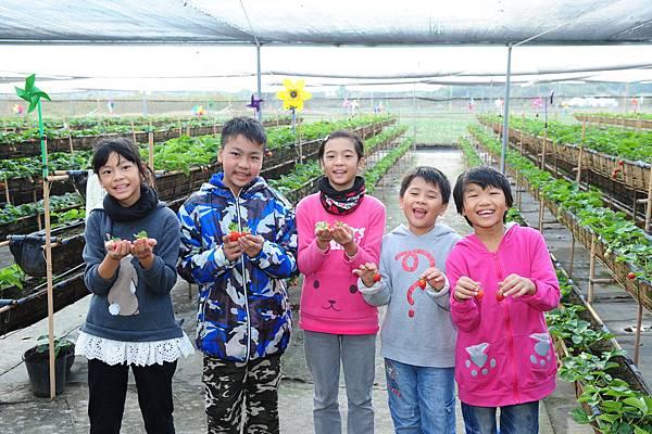 圖說:李惠蘭修女帶孩子到草莓園體驗,大家都好開心呀!