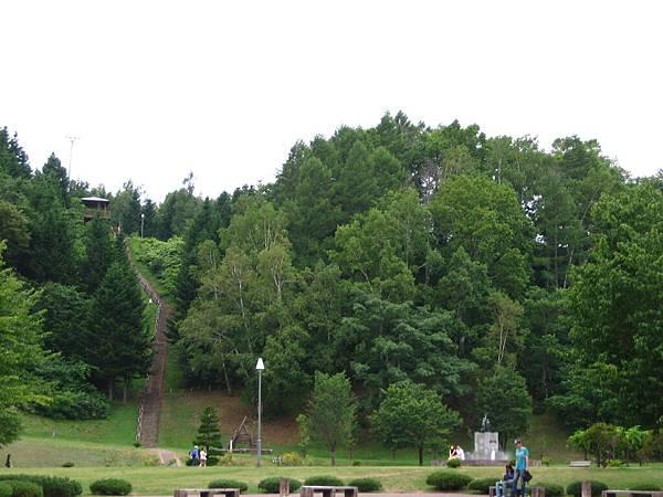 368 公園裡一片綠意.JPG