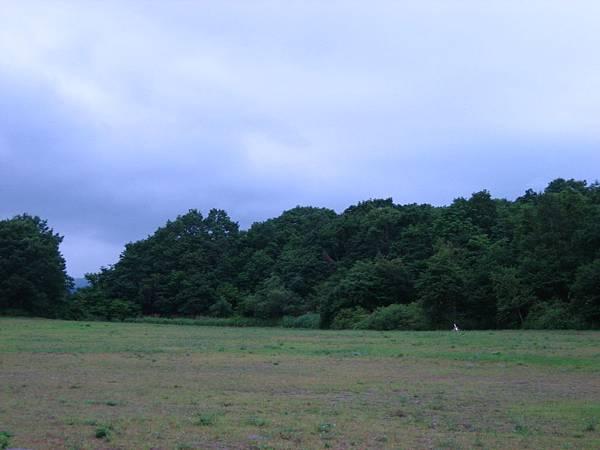 430 大沼公園景 4.JPG