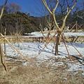 2013-01-05 14.18.04.jpg