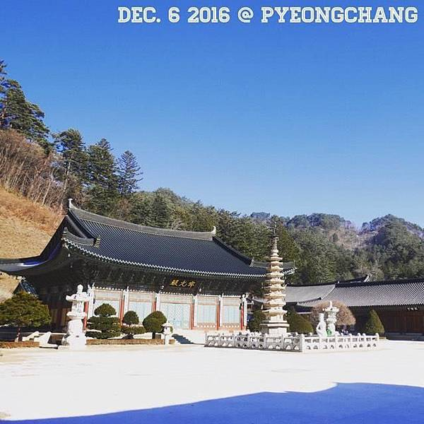 [[江原//遊樂]] 平昌 - 月精寺(월정사),白雪覆蓋的五臺山國家公園