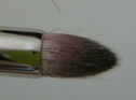 mac brush #219.jpg