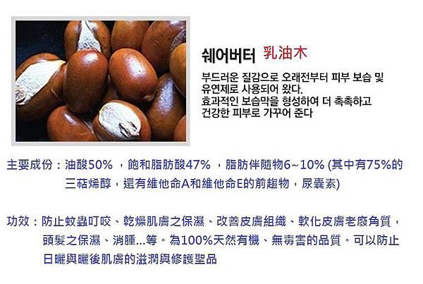 乳油木說明