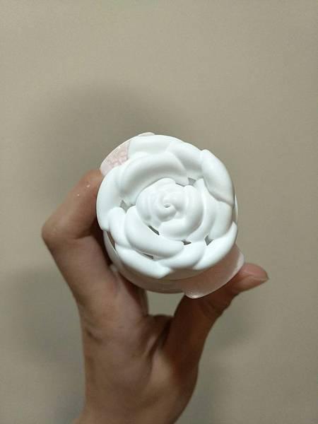 玫瑰花_170129_0009.jpg