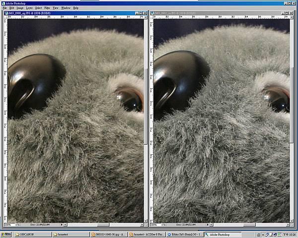 sigma18200_vs_canon1740.jpg