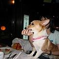 果然最挑食的Hana也超愛肉丸子