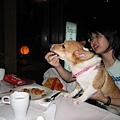 Hana在吃肉丸子,大家都好喜歡現做的狗狗肉丸子