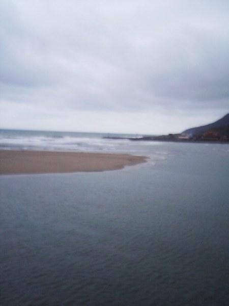 還是sea