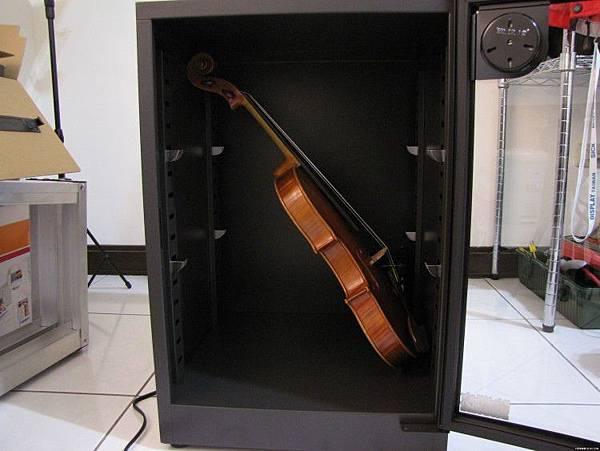 防潮箱放提的琴收藏