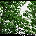 DSC07829-1.jpg