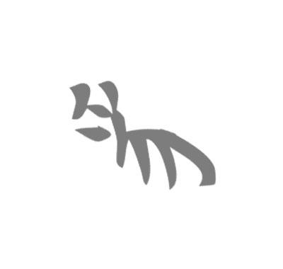 貓字變化02.jpg