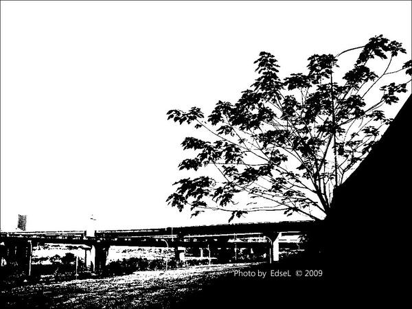 IMGP0951-31.jpg