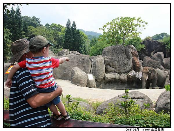 動物園 (1).jpg