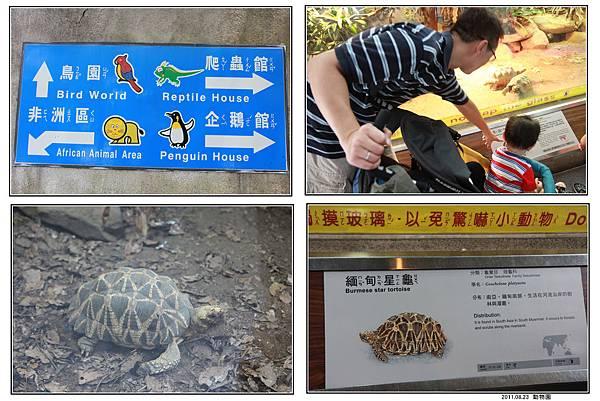 動物園 (08).jpg