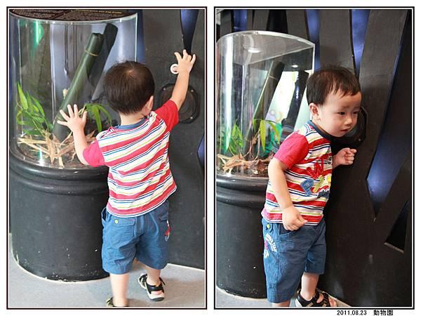 動物園 (09).jpg