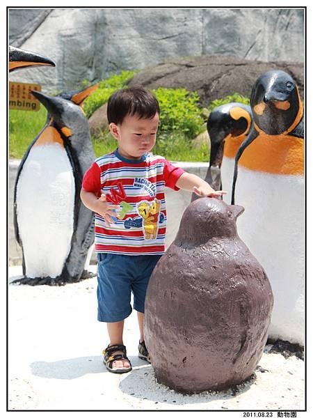 動物園 (10).jpg