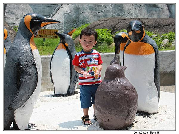 動物園 (11).jpg