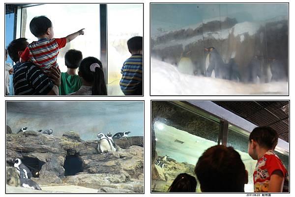 動物園 (12).jpg