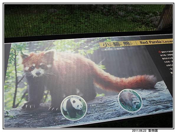 動物園 (14).jpg