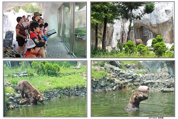 動物園 (15).jpg