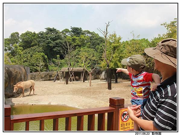動物園 (16).jpg