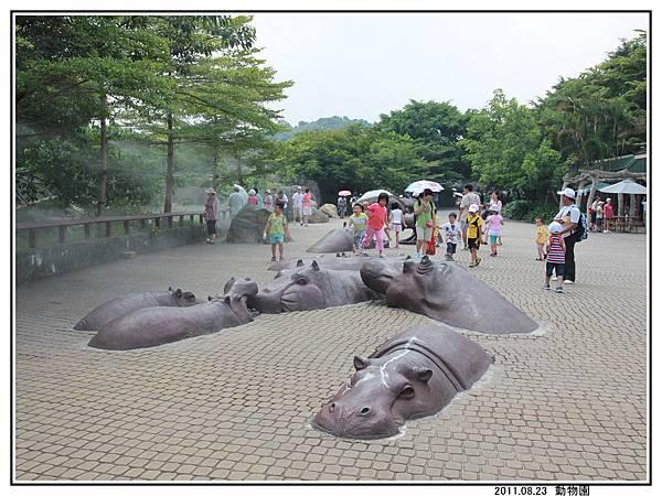 動物園 (25).jpg
