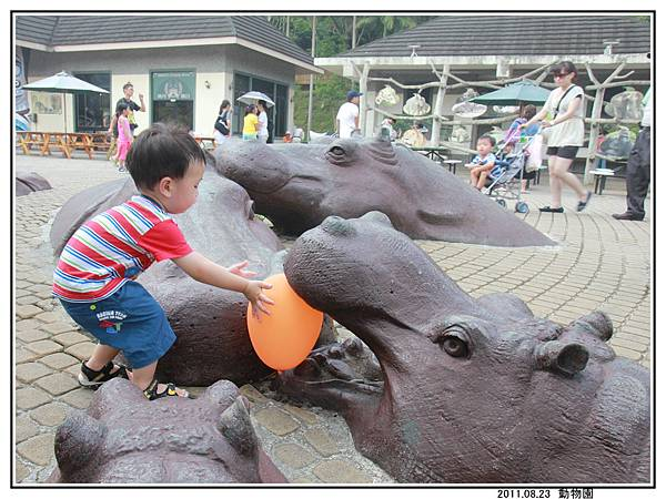 動物園 (26).jpg