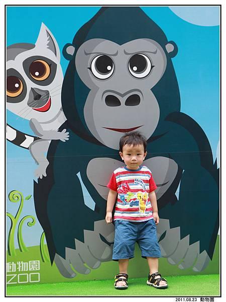 動物園 (31).jpg