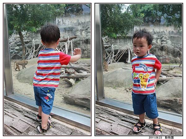 動物園 (32).jpg