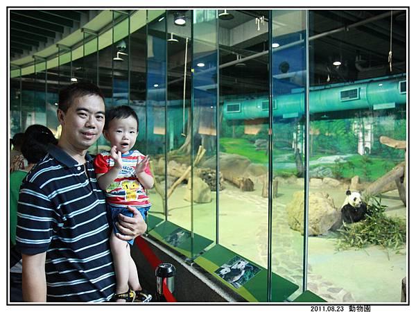 動物園 (41).jpg