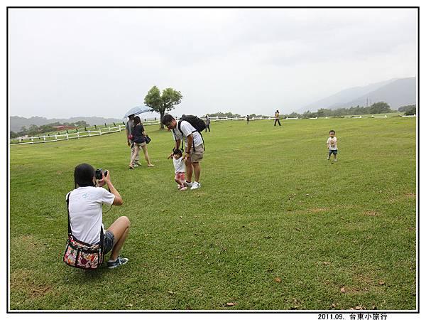 草地 (03).jpg