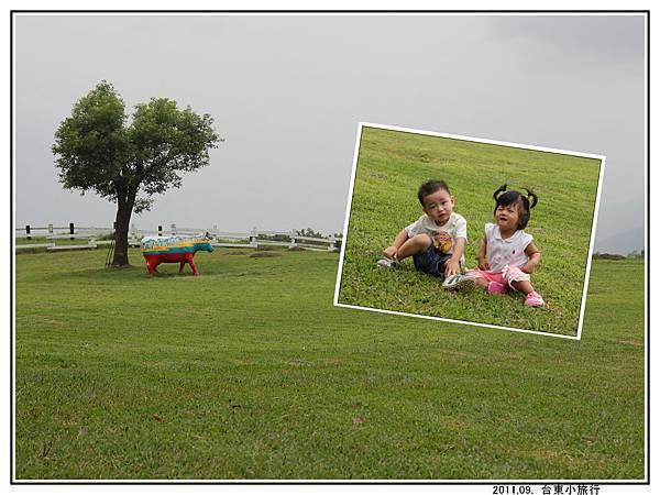 草地 (05).jpg