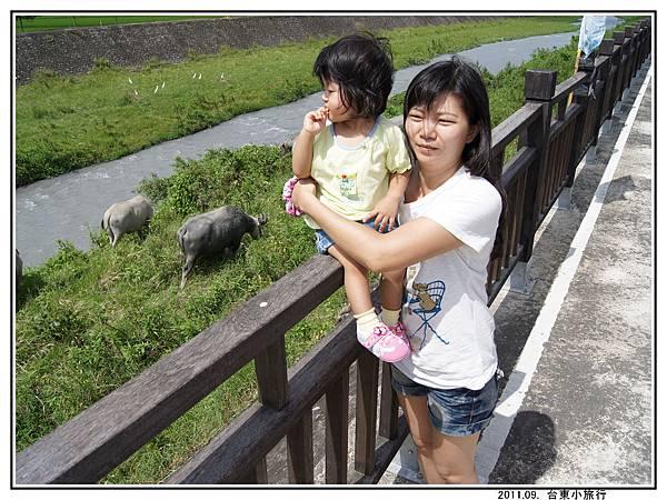 關山親水公園 (19).jpg