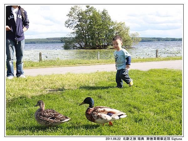 Day 07 瑞典 Sigtuna 古城  (52).jpg