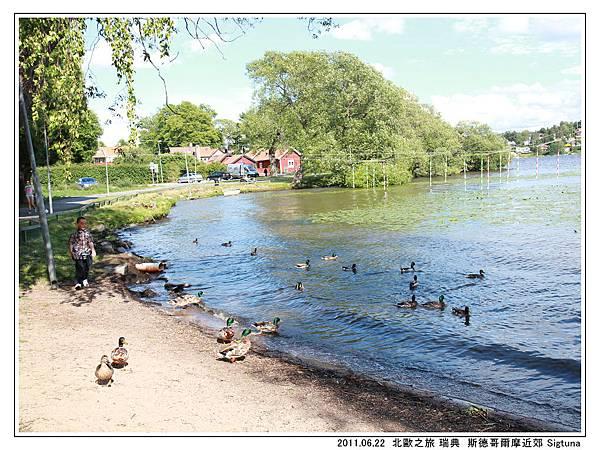 Day 07 瑞典 Sigtuna 古城  (61).jpg