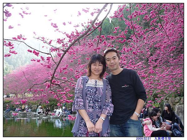 2009 九族櫻花祭03.jpg