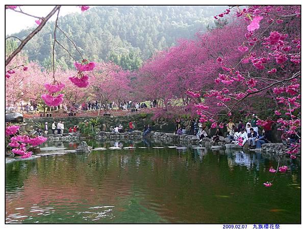 2009 九族櫻花祭05.jpg