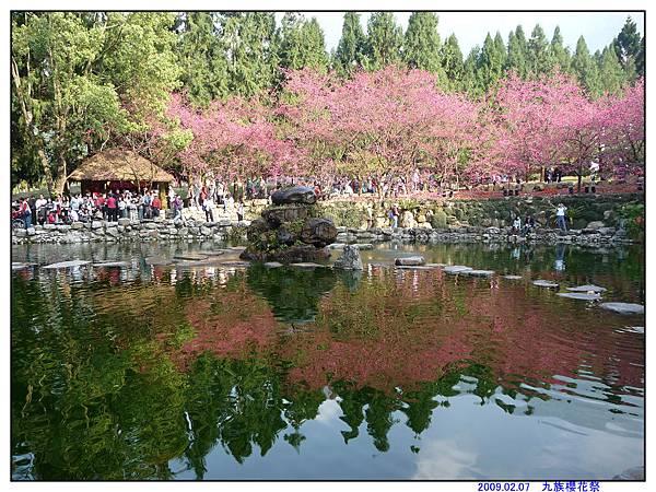 2009 九族櫻花祭10.jpg