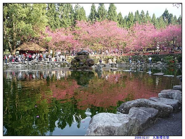 2009 九族櫻花祭11.jpg