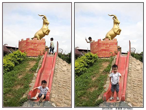 羊世界19