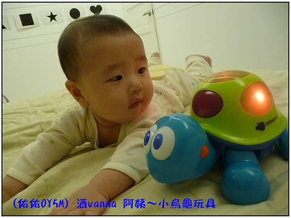 小烏龜玩具02