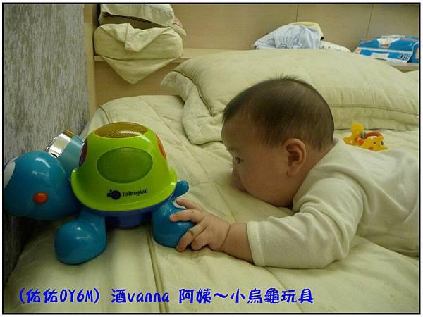 小烏龜玩具03