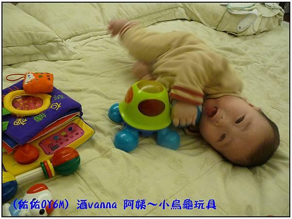 小烏龜玩具05