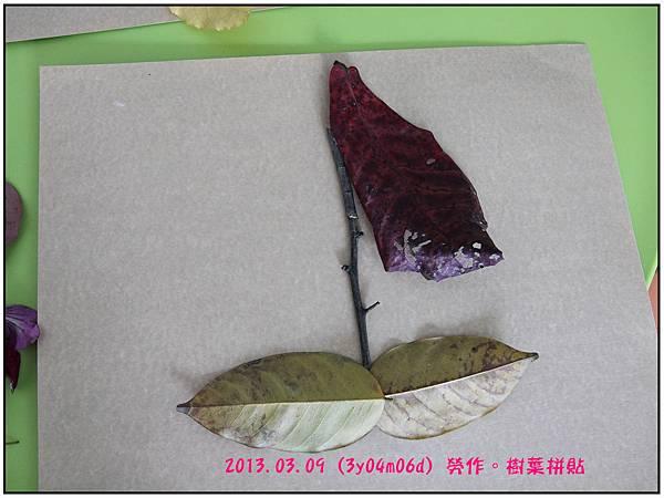 樹葉拼貼--15
