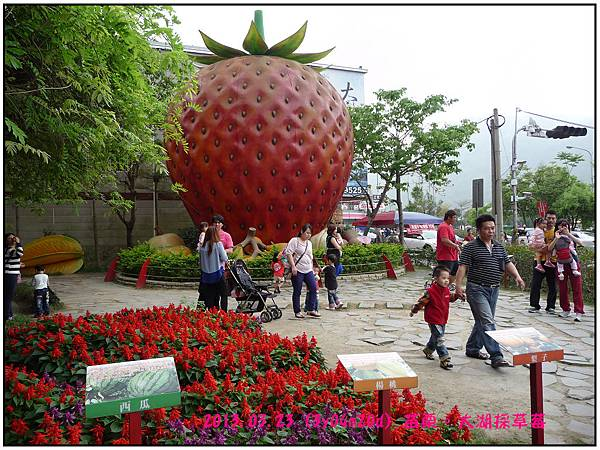 草莓文化館-04