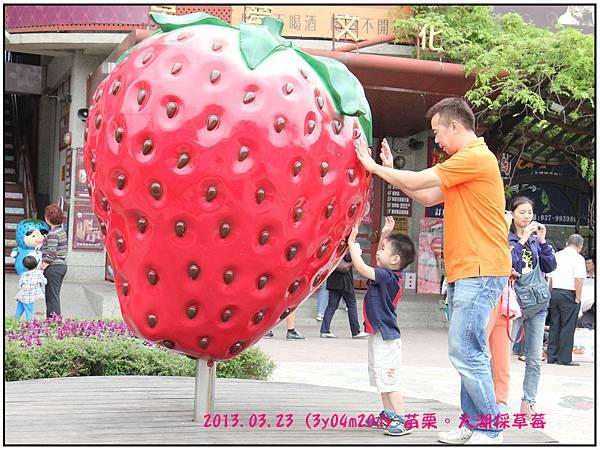 草莓文化館-10